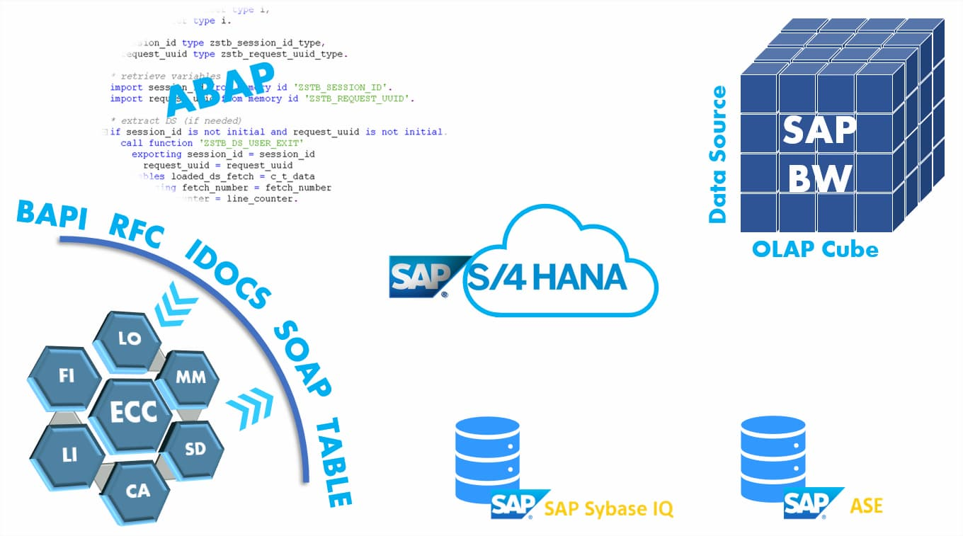 Complexity & Variety in SAP software system