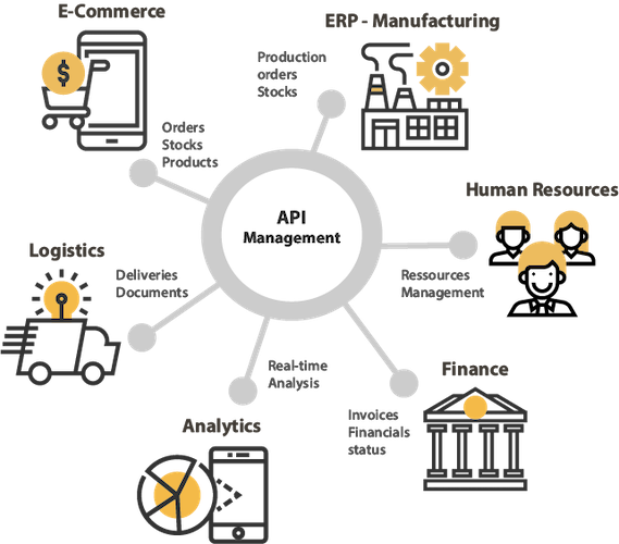 API WebServices MicroServices Management